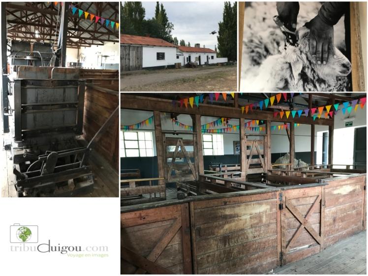 ARGENTINE LAGO BUENOS AIRES.002